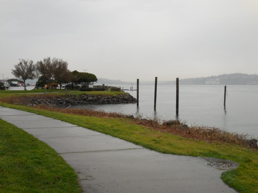Alki Beach in the rain
