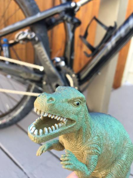 Mr. Allosaurus, my new adventure buddy, proclaims the Pedal House the best bike shop ever after getting that Epic in the background all fixed up!